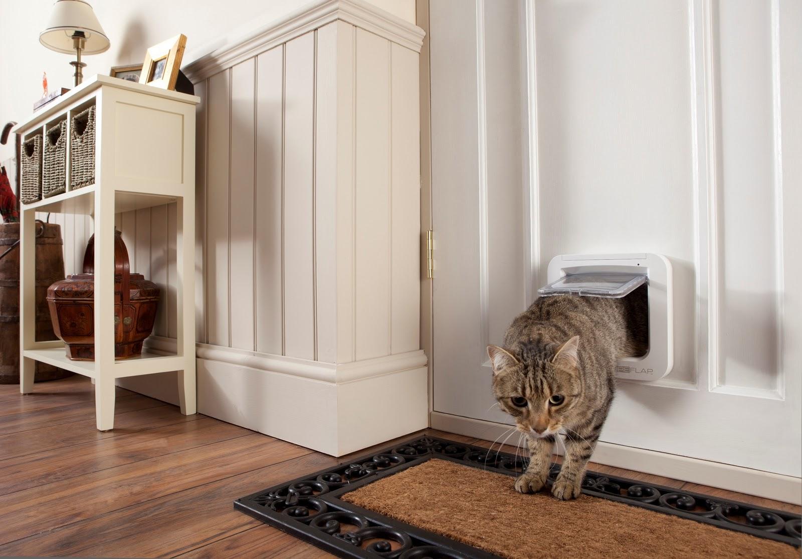 Заказать  межкомнатные двери с лазом для животных